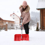 5 Essential Winter Lawn Care Tips