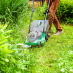 Spring Yard Cleanup Checklist